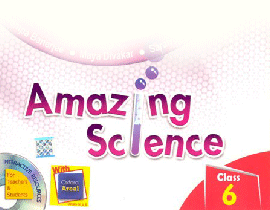 Amazing Science 6